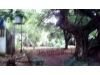 Foto 10 - Hermosa casa zona hippos- Reparto San Juan