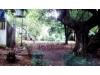 Foto 5 - Hermosa casa zona hippos- Reparto San Juan