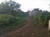 Foto 3 - Venta de Terreno en Carr. Vieja a león km 13