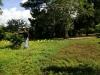 Venta Terreno con casa entre Masaya- Tipitapa