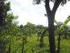 Venta de terreno de 6,502 vrs2 en Santo Domingo