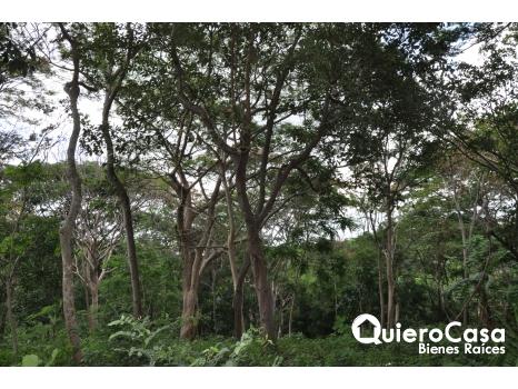 Precioso terreno en venta en Santo Domingo