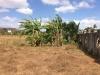 Foto 2 - Se vende terreno en Ticuantepe