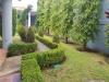 Foto 11 - Hermosa casa en renta y venta en Las Colinas