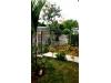 Foto 2 - Venta de hermosa casa en Linda Vista CK0216
