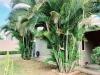Foto 19 - Venta y renta de casa en Colinas