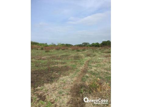 Bonita propiedad ideal para el cultivo de caña y trigo.