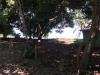 Venta de Terreno en Ometepe