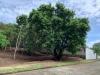 Foto 2 - Se vende terreno en Santo Domingo