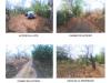 Foto 2 - Venta de Terreno en Carretera Nindiri Veracruz