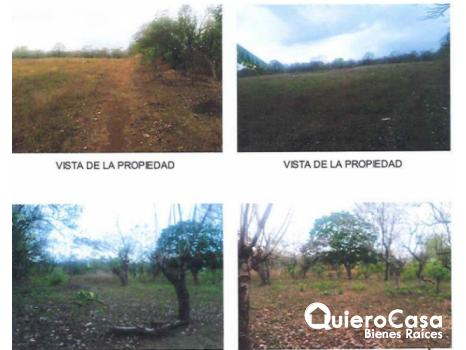 Venta de Terreno en Carretera Nindiri Veracruz
