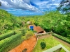 Foto 6 - Preciosa casa en renta con espectacular vista panoramica