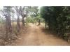 Foto 12 - Terreno en venta carretera a Ticuantepe