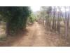Foto 3 - Terreno en venta carretera a Ticuantepe