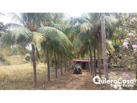 Terreno en venta carretera a Ticuantepe