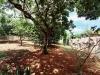 Foto 3 - Terreno en venta en Carretera Masaya