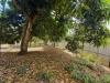 Foto 7 - Terreno en venta en Carretera Masaya