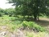 Venta de Terreno en Carretera a Masaya