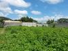 Foto 1 - Terrenos carretera masaya  km 13