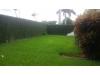 Foto 10 - Venta / Renta de acogedora casa en Las Colinas