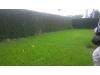 Foto 11 - Venta / Renta de acogedora casa en Las Colinas